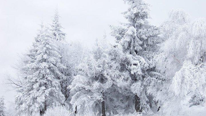 В горных районах уезда Вылча выпал снег