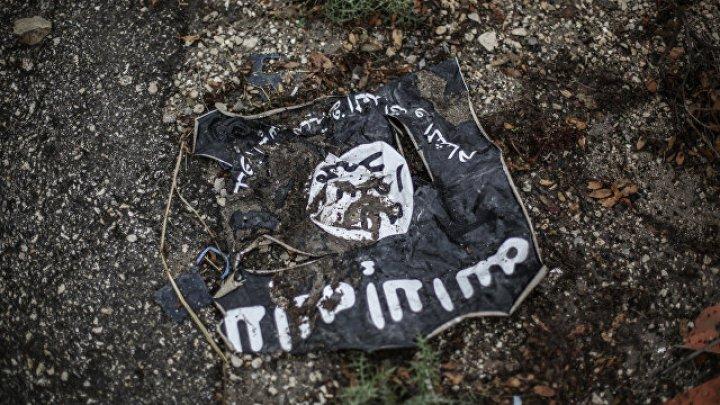 Французская Джихади-бабушка получила десятилетний срок за помощь ИГ