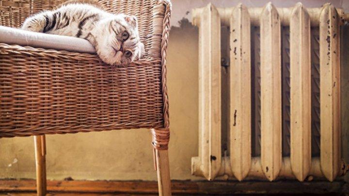 Жильцов дома без труб обязали платить за отопление
