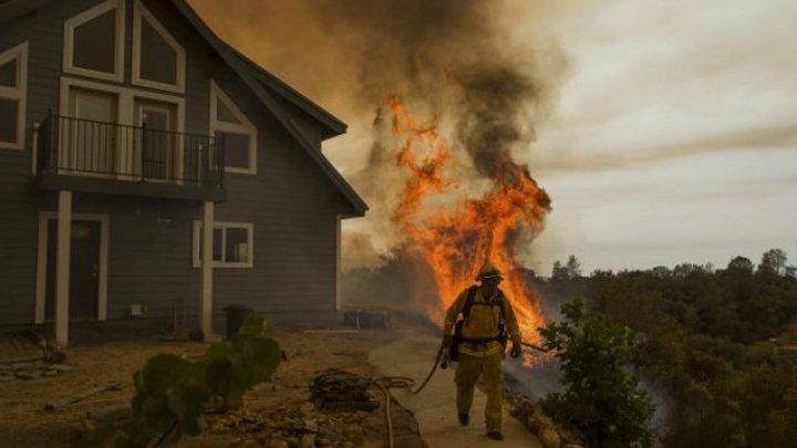 Лесные пожары в Калифорнии уничтожили более 3 тысяч зданий
