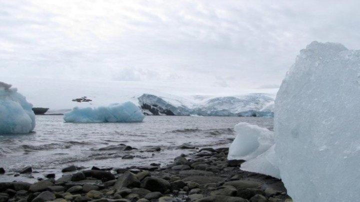Эксперты рассказали об опасностях таяния льдов Арктики