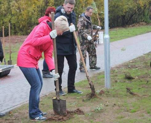 Елена Ковалева и активисты «Чистых прудов» высадили в парке «Молодежный» более 100 деревьев