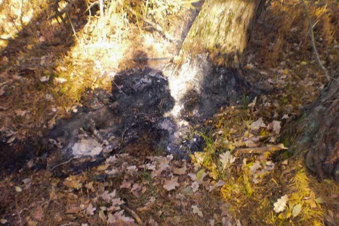 Тело завалил травой и поджег
