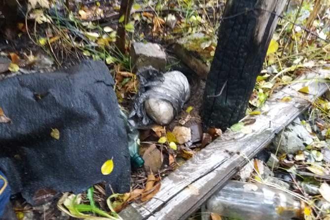 19-10-2017: Задержан житель Московской области