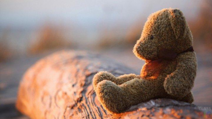 Во Флориде женщина предложила полицейскому секс в обмен на плюшевого медведя