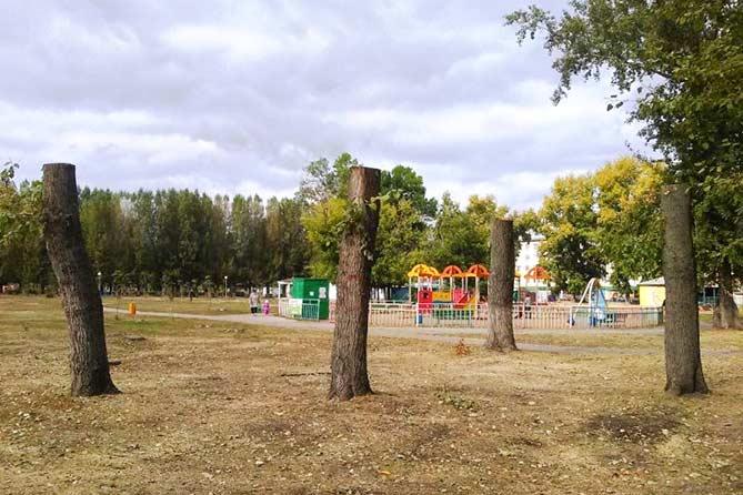 Кто хочет взять парк в концессию