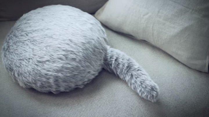 Котики не нужны: В Японии изобрели робота-подушку с хвостом