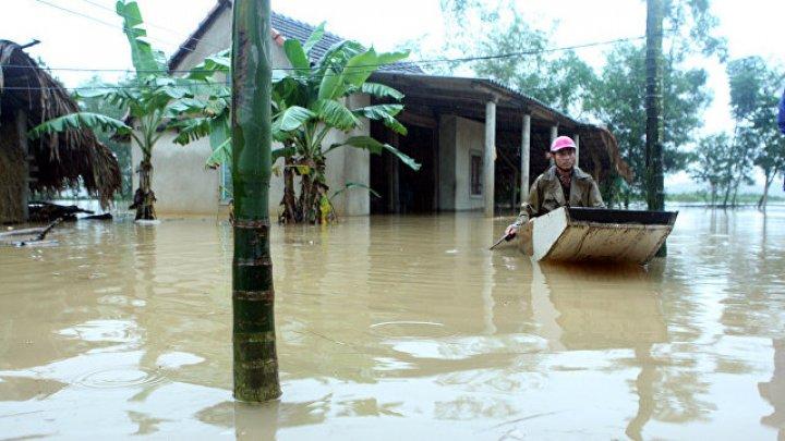 Число жертв тайфуна во Вьетнаме возросло до 89 человек