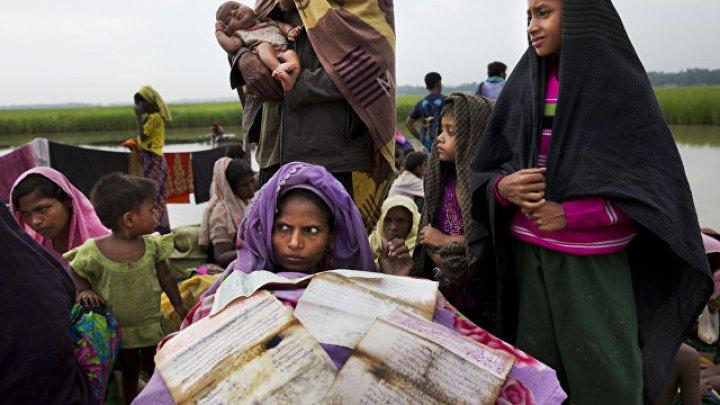 ООН: четверть беженцев в мире являются выходцами из Сирии и Ирака
