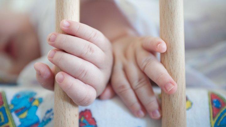 На Украине кошка задушила трехмесячного младенца
