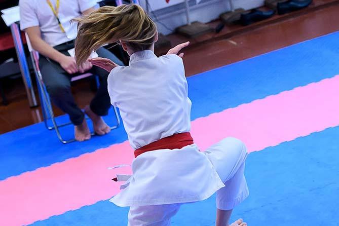 Спартакиада боевых искусств 2017: Объединили стили