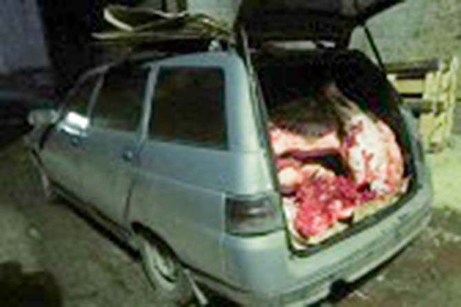 В Тольятти задержано более 400 кг свинины неизвестного происхождения