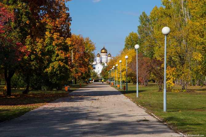 Погода в Тольятти с 8 по 11 ноября 2017 года