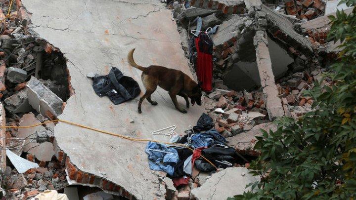 В Южной Корее более 50 человек пострадали при землетрясении