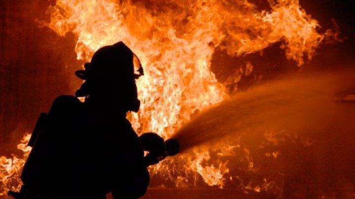 В Москве загорелся вещевой рынок: эвакуировано 150 человек
