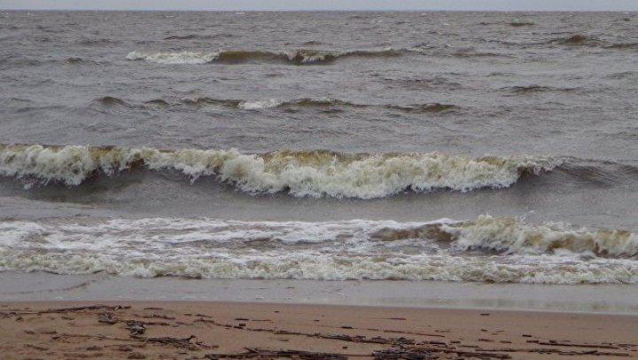 В Финском заливе корабль потерпел крушение, два человека пропали без вести