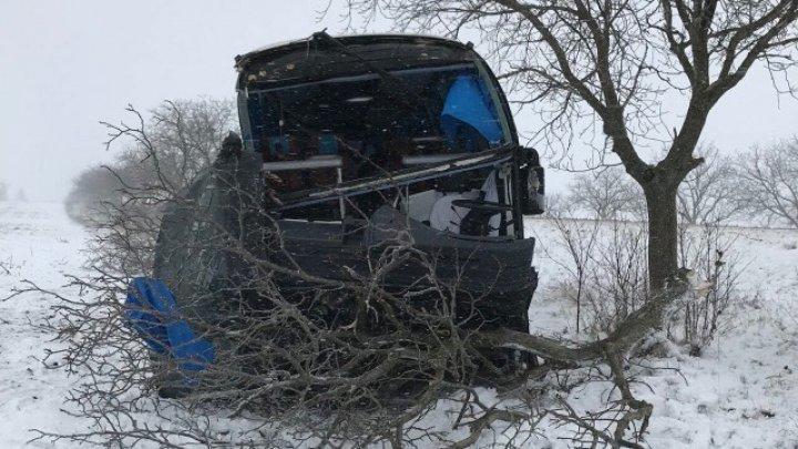 Автобус врезался в дерево на трассе Леушень-Кишинёв: два человека пострадали (фото)