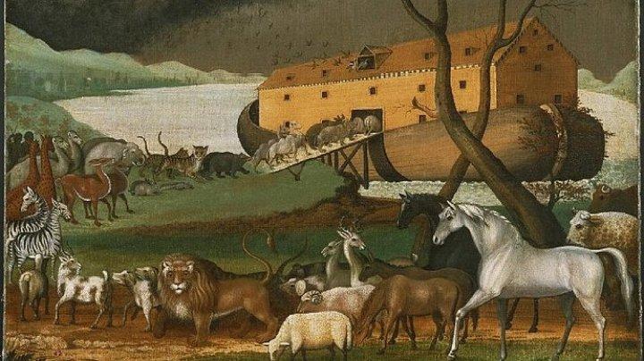 Учёные снова нашли Ноев ковчег