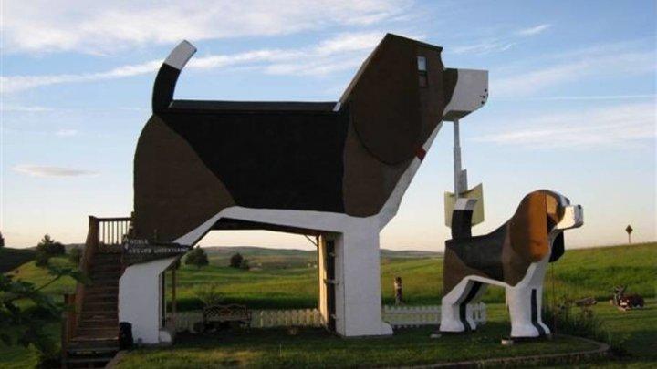 В США  построили дом в форме огромного пса