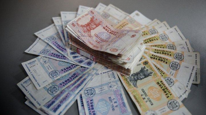 Правительство Чехии выделит аграриям 550 тысяч евро