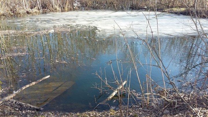 В Тверской области ребенок пошел домой через реку, провалился под лед и утонул