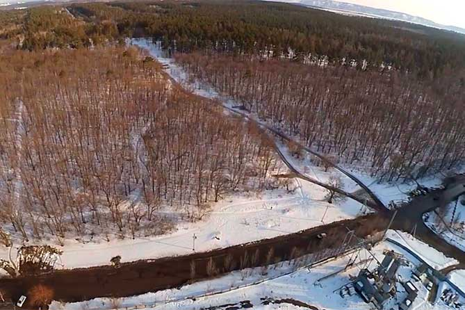 Лучше дать городу финансирование достаточное, и мы восстановим лес