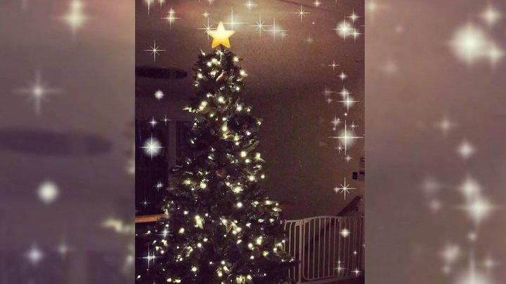 Боксеру-мусульманину угрожают смертью из-за рождественской елки