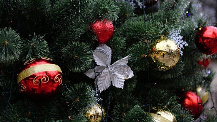 В Риге двое россиян попытались украсть украшения с елки