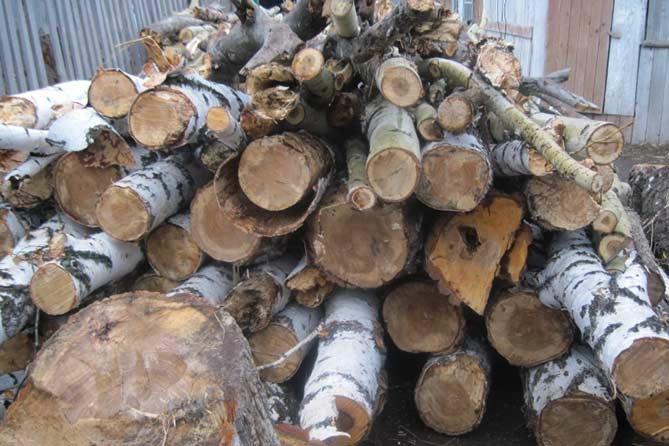 25-01-2018: Все желающие могут получить дрова бесплатно