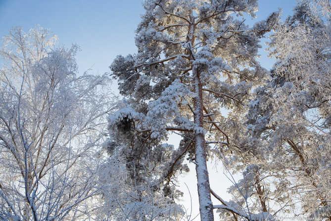 Погода в Тольятти с 27 по 29 января 2018 года