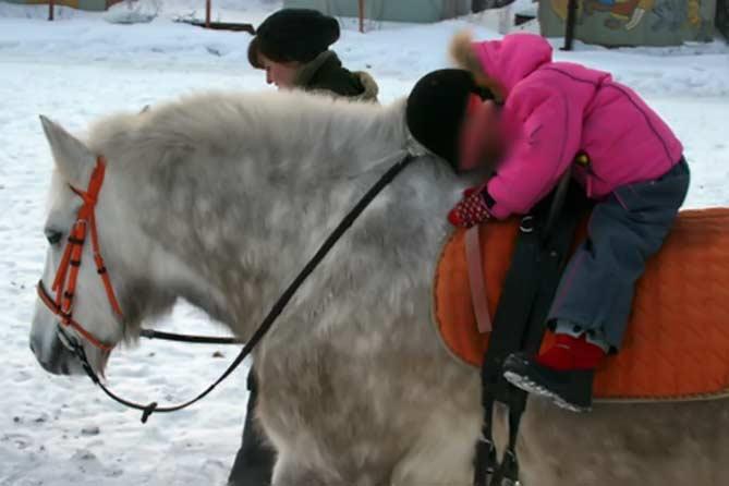 Иппотерапия и верховая езда в Тольятти
