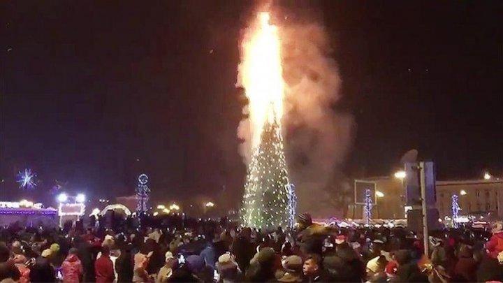 Новую елку взамен сгоревшей установили в Южно-Сахалинске
