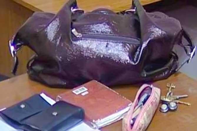 Пропавшая сумка женщины: на след вывел телефон