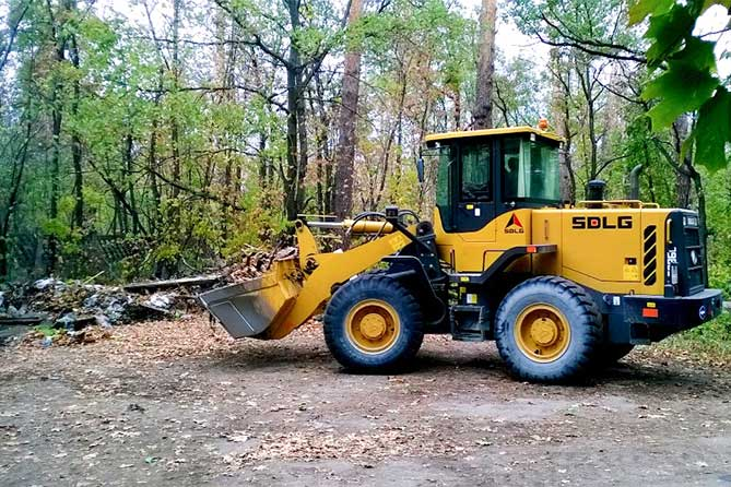 На ликвидацию свалок в городском лесу направят более 1 миллиона рублей