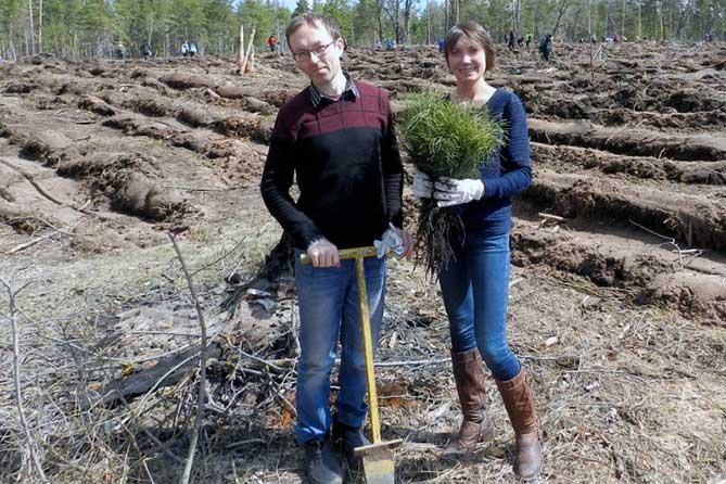 Журналисты «Площади СВОБОДЫ» приняли участие в посадке тольяттинского леса