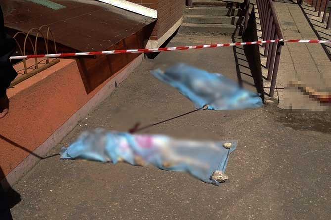 При падении с 9-го этажа погибли 40-летняя женщина и ее 3-х летняя дочь