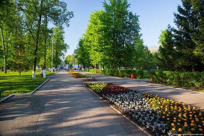 Выходные в парке Тольятти