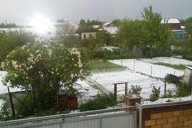 Утром 1 июня 2018 года в окрестностях Тольятти выпал снег