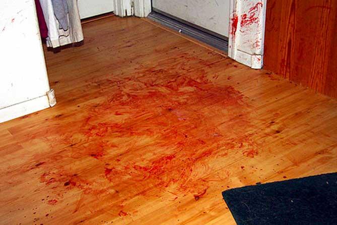 Ночное убийство в Тольятти: 14 ударов топором