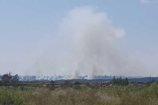 В ликвидации пожара принимали участие 220 сотрудников МЧС