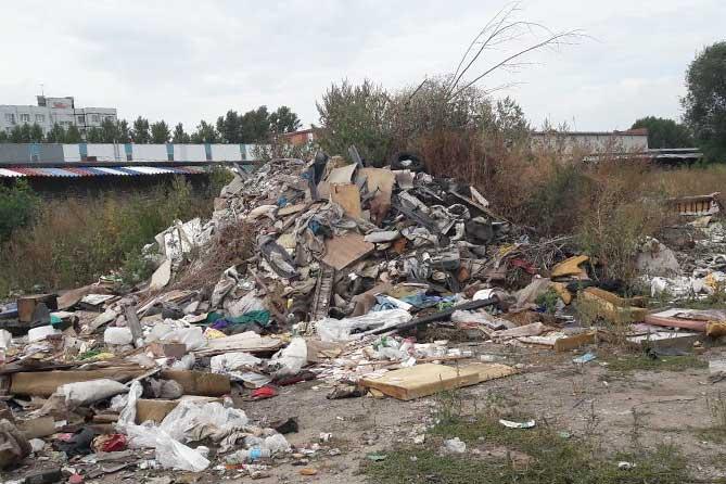 Несанкционированные свалки: Жителей просят сообщать о фактах сброса отходов