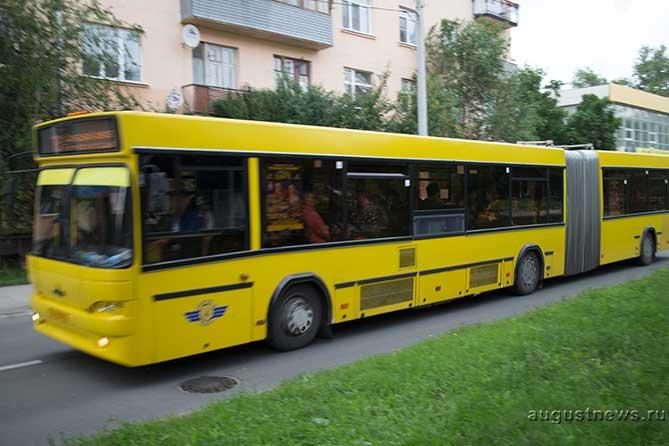 В тольяттинском автобусе пострадала двухлетняя девочка