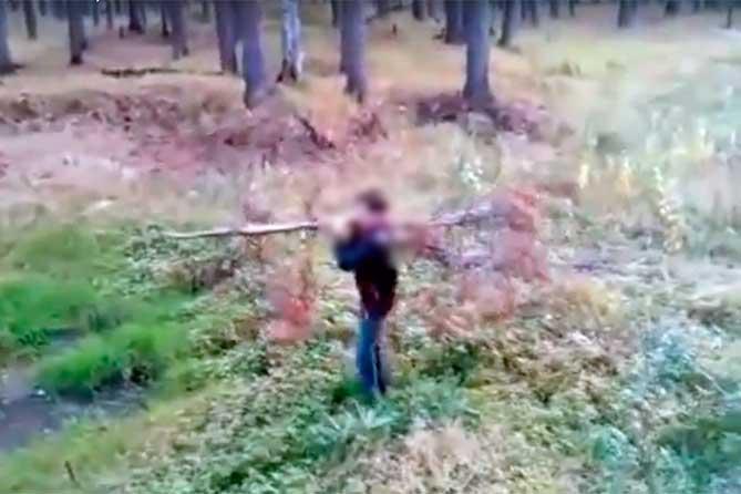 Что делать с поджигателями леса в Тольятти