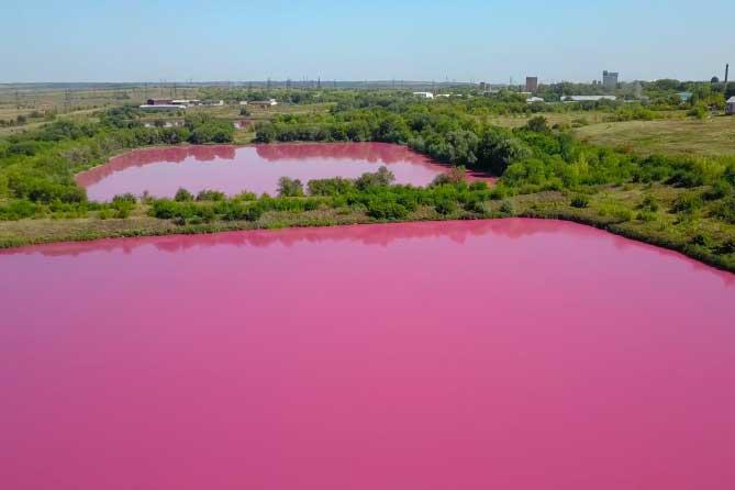 «Розовые» озера в Самарской области: Информация для жителей