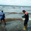 В Волге у пляжа обнаружено тело мужчины
