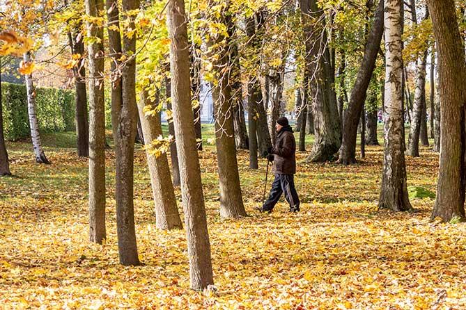 Погода осенью и зимой 2018 года: Нас ожидает аномально теплый октябрь