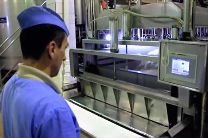 В Тольятти планируют построить завод по производству сыра