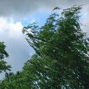 Погода в Тольятти с 25 до 28 сентября 2018 года: Температура воздуха понизится