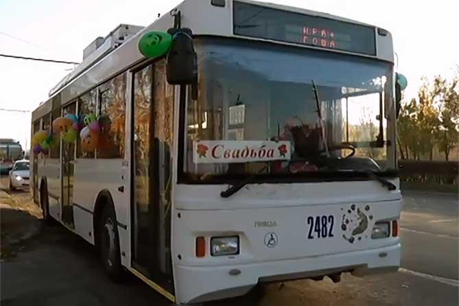Молодожены в Тольятти отпраздновали свадьбу в троллейбусе