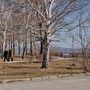 В ноябре в Тольятти пришли морозные дни
